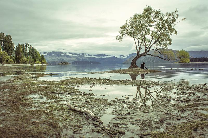Solitude – Simon Williams