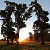 West Coast – evening light – Thierry Huet