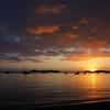 Sunrise Swim – Geoff Perry