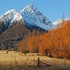 winter willows     [M]         Tim Herrick