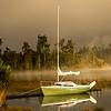 morning mist     [M]     Bob Steel