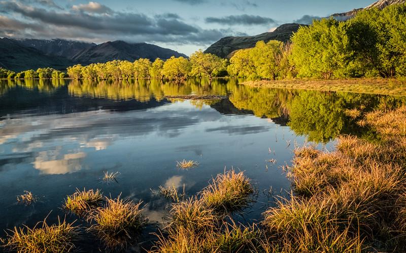 Paddock Bay By Jacqui Scott