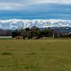 OPA 040 Winter South Canterbury. By Bob Steel