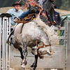 OPA 068 Ride that Bronco. Heather Macleod