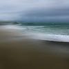 OPA 050 Windswept. Barbara Lee
