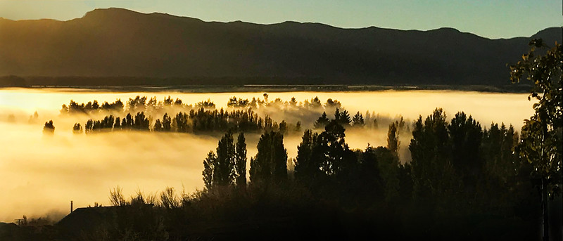 Morning Mist, Albert Town, Wanaka – Heather Macleod