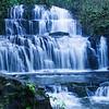 Purakaunui Falls by Bob Steel
