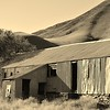 Old Woolshed by Jeannette Emmerson