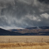 Storm Brewing by Jacqui Scott
