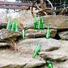 Ten green bottles sitting on a wall – Kathy Tweedie