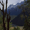 Mt Somnus – Joanne Deaker