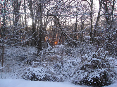 One of our many little snow storms this winter - Grandma took this picture leaving for work in the morning.