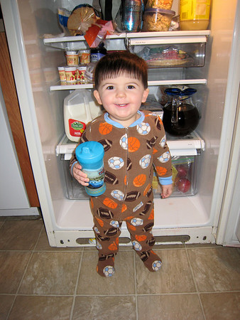 I love to hang in the refrigerator!