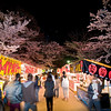 A typical scene at the market in Maruyama park in Eastern Kyoto during their cherry blossom festival.