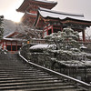 Kiyomizu Temple at 7:30am after a rare dusting of snow.