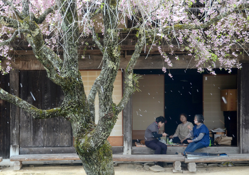 Enjoying lunch at the rest house along the trail from Tsumago to Magome.