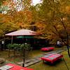 Takao, Northwest Kyoto