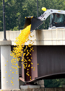 2,000 rubber ducks are unloaded off the Danville-Riverside Bridge Saturday Aug. 11, 2012 as part of the duck derby organized by Service 1st Federal Credit Union to benifit multiple communtiy organizations.