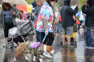 Jane Smith of Selinsgrove and her dog Brutus were participating in Sunday's March of Dimes walk at Geisinger in Danville.