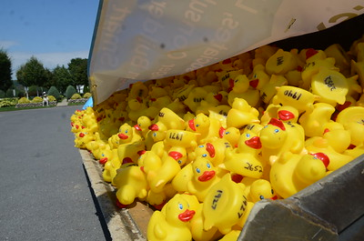 Service First Duck Derby 2015