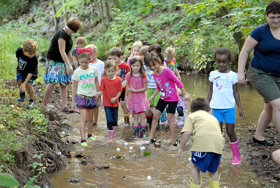 St. Cyril kindergarten students chase their ping pong balls down a creek while trying to dertimine how fast the creek was going on Friday during a nature lesson.