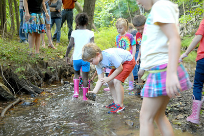 St. Cyril kindergarten student James Toms picks up a rock from a creek while looking for a animal discovery on Friday during a nature lesson.