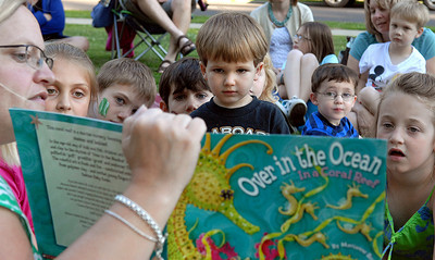 Calvin Martin, 3, of Danville stands for a better view during Grove Presbyterian Church's story hour Wednesday June 13, 2012 at Memorial Park in Danville.  Angie Gibson led the event which included books and activities all about the beach and ocean.