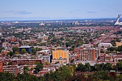 A View of the Neighborhoods of Montreal from Mount Royal