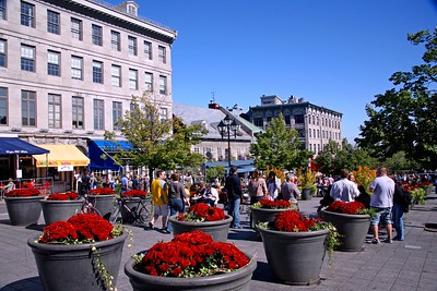 A View of Jacques Cartier Square