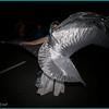 E-3; 12/6/2009; 1/125 at f/5.6; ISO 100; white balance: Auto; focal length: 14 mm