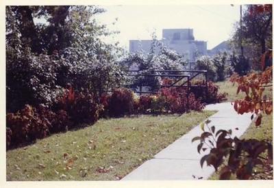 Colored Photograph of Mr. Elder's Garden VII (02055)