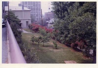 Colored Photograph of Mr. Elder's Garden VIII (02058)