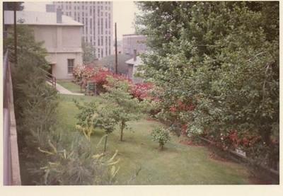 Colored Photograph of Mr. Elder's Garden XVI (02066)