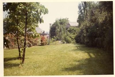 Colored Photograph of Mr. Elder's Garden I (02049)