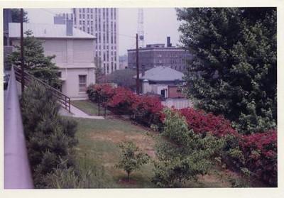 Colored Photograph of Mr. Elder's Garden XIX (02070)