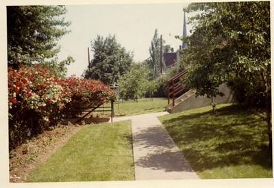 Colored Photograph of Mr. Elder's Garden XV (02065)