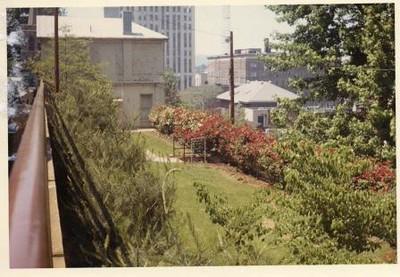 Colored Photograph of Mr. Elder's Garden VI (02054)
