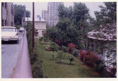 Colored Photograph of Mr. Elder's Garden XVII (02068)