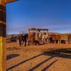 Navajo Horse Corral
