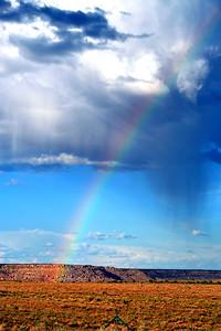 Rainbow-003