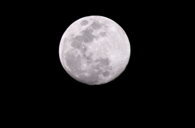 January's Full Wolf Moon  	(Moon names date back from Native American tribes living in the northern and eastern parts of what is now called the United States)  January 20, 2008