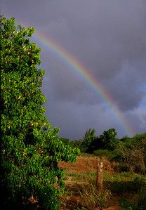 Rainbow at Sunset Beach North Shore of O'ahu, Hawai'i