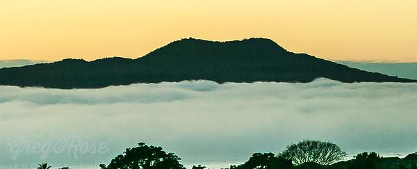 Rangitoto Peaking through the fog