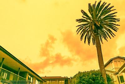 Auckland's Sky 5 January