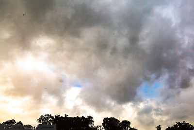 Spring in Auckland can be blue sky then half an hour later rain