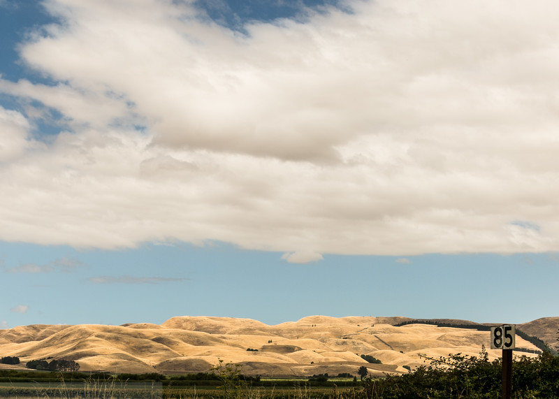 Parched Hawkes Bay.