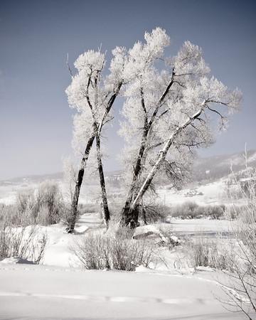 Colorado Frost