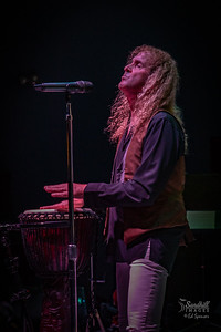 Scott, In The Light of Led Zeppelin