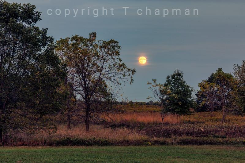 Prairie Moon I