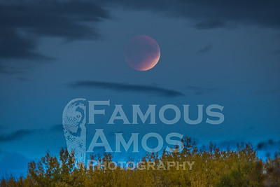 Moon Eclipse Sept 27,2015